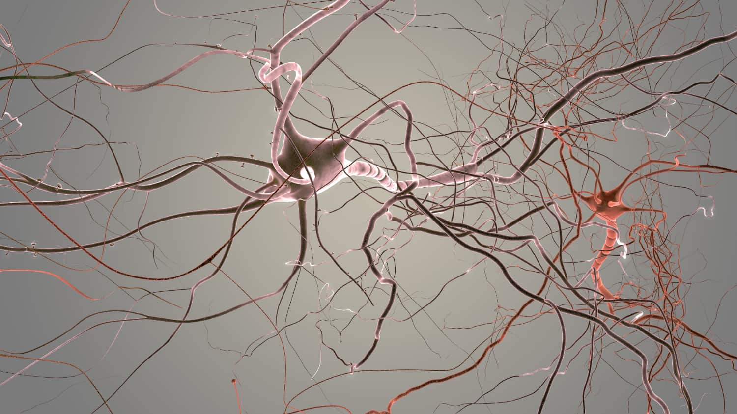 What is trapped nerve?