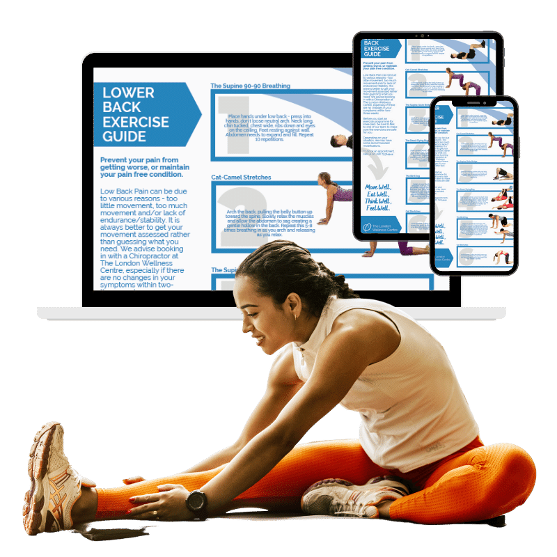 lower_back_pain_exercise_guide